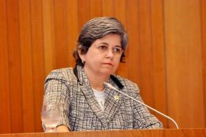 Gardênia Castelo é autora do projeto que concede benefício